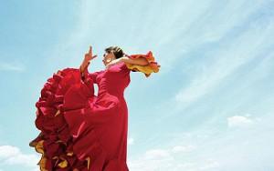 flamenco_1252065c