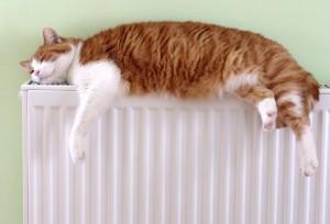 calefaccion-radiador